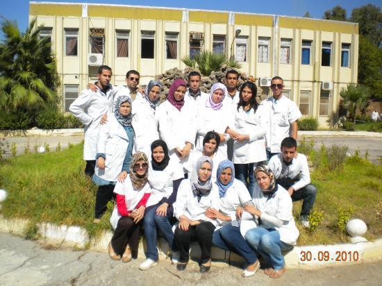 A.M.A.R./2008_2011