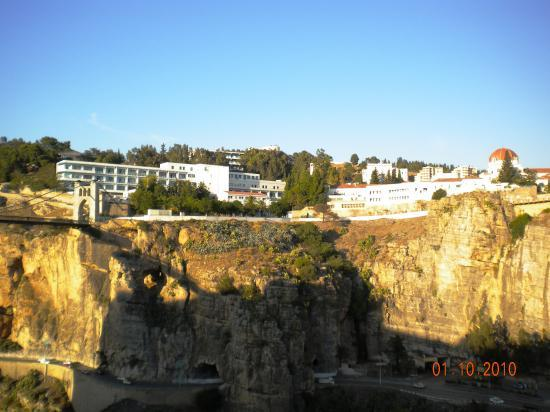 Vue panoramique du C.H.U_2